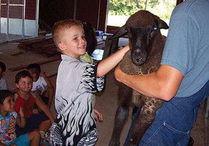 Clear Lake Farm Animal Camp